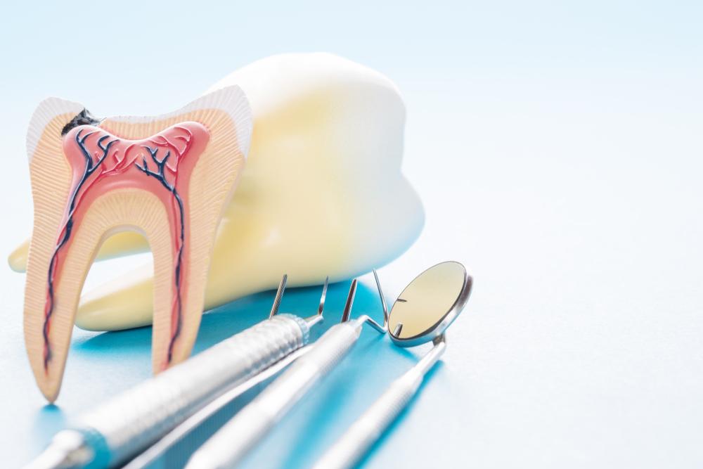 Чувствительный и нечувствительный дентин – какая между ними разница?